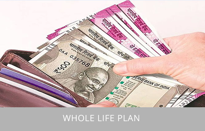 Life plan for your life